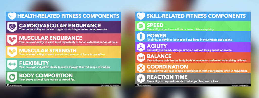 Components of Fitness Posters for Physical Education