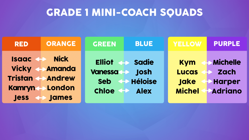Mini-Coach Pairings Example